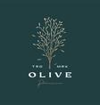 olive tree sophisticated aesthetic logo icon