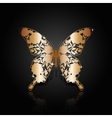 Copper abstract butterfly on black background vector image vector image