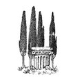 cypress trees in greece greek style antique vector image