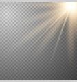 glowing sunlight effect vector image