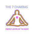 graphic showing the seven chakras vector image vector image
