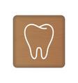 human tooth icon an internal organ human vector image vector image