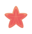 sea starfish vacation beach sign vector image vector image