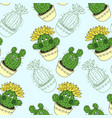 seamless pattern with cactus and succulents in the vector image vector image