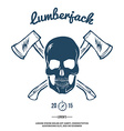 Skull with Crossed Axes vector image