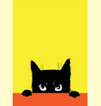 the angry black cat vector image vector image