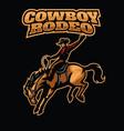 cowboy rodeo vector image