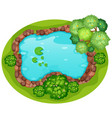 an aerial view pond vector image vector image