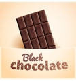 Bar of black chocolate vector image vector image