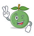 two finger guava character cartoon style vector image