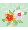 Bouquet of Hibiscus on Light Green Background vector image vector image