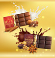 milk and dark chocolate compositions vector image vector image