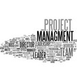 managment word cloud concept vector image vector image