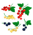 set of cartoon red black and white currant vector image vector image