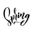 spring trendy script lettering design spring vector image vector image