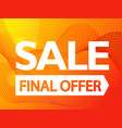 the final offer sale promo banner vibrant vector image vector image
