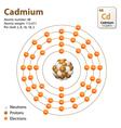 Atom Cadmium vector image vector image