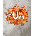 Autumn foliage banner for your design vector image