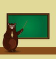 cartoon bear teacher holding pointer standing vector image
