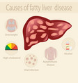causes of fatty liver disease vector image