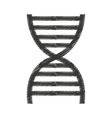 dna molecule isolated icon vector image