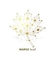 Gold maple leaf vector image