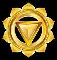 hindu chakra manipura medallion vector image vector image