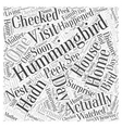 hummingbird house Word Cloud Concept vector image vector image