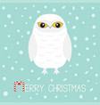merry christmas candy cane text white snowy owl vector image vector image