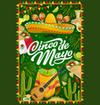 mexican cinco de mayo party sombrero and fireworks vector image vector image
