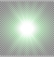 rays of light green color vector image