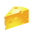 slice of cheese - icon of piece of holed cheese vector image vector image