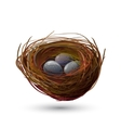 Bird Nest With Eggs vector image