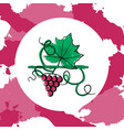grape berry leaf vector image