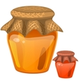 Jar with honey healthy dessert vector image