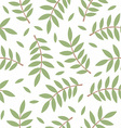 Pattern of twigs with leaves vector image vector image