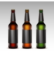 Set of Glass Bottles Dark Beer with Black labels vector image vector image