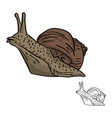 snail sketch doodle hand drawn with vector image vector image