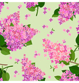 seamless texture with flowers of lilac vector image