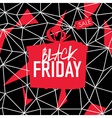 Big Sale Friday Sale Poster vector image