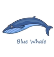 Cartoon ocean blue whale vector image vector image