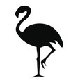 silhouette of a flamingo vector image vector image
