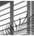 blurred palm leaves and blinds shadow cast vector image vector image
