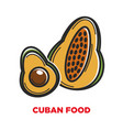 cuban food promo banner with locally grown fruits vector image vector image