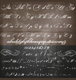 hand made script font in vintage victorian style vector image