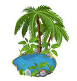 pond with palm stones seashells and sand around vector image vector image