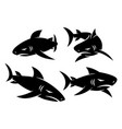 shark logo symbol design set template vector image vector image