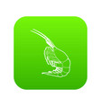 shrimp icon green vector image vector image