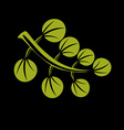 Single flat green leaf Herbal and botany art vector image vector image