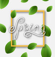 spring lettering calligraphic text headline vector image